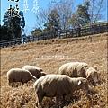 2010-1212 -南投-清境農場-青青草原 (17).jpg
