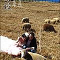 2010-1212 -南投-清境農場-青青草原 (19).jpg