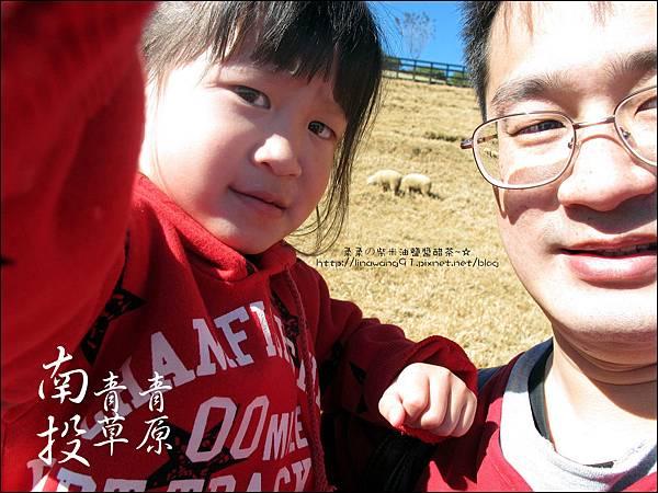 2010-1212 -南投-清境農場-青青草原 (22).jpg