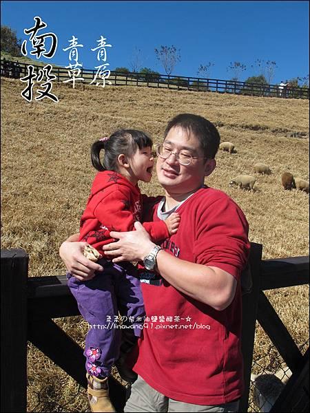 2010-1212 -南投-清境農場-青青草原 (23).jpg