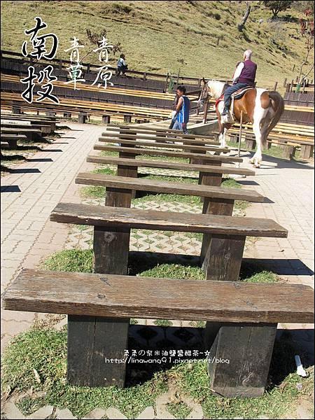 2010-1212 -南投-清境農場-青青草原 (29).jpg