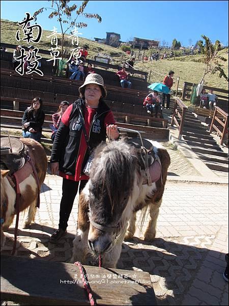 2010-1212 -南投-清境農場-青青草原 (32).jpg