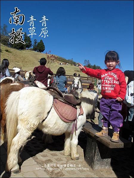 2010-1212 -南投-清境農場-青青草原 (33).jpg