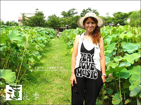 2011-0729-桃園觀音-大田蓮花餐廳 (26).jpg