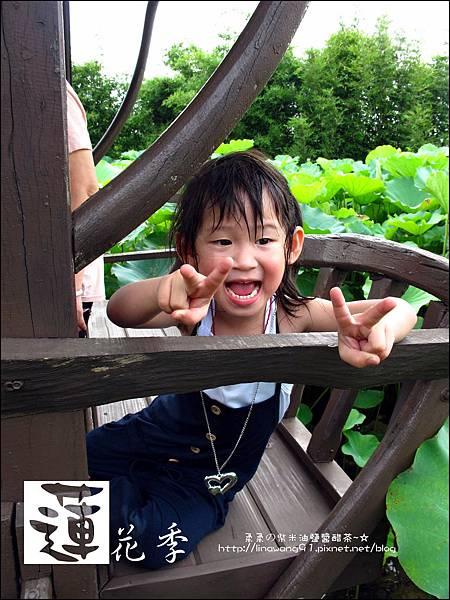 2011-0729-桃園-觀音-林家古厝 (7).jpg
