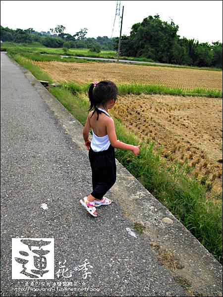 2011-0729-桃園-觀音-林家古厝 (43).jpg