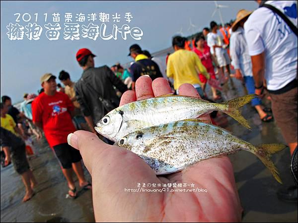 2011-0813-苗栗海洋觀光季-竹南-龍鳳漁港 (16).jpg