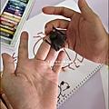 2011-0802-昆蟲課-昆蟲老師-吳沁婕 (21).jpg