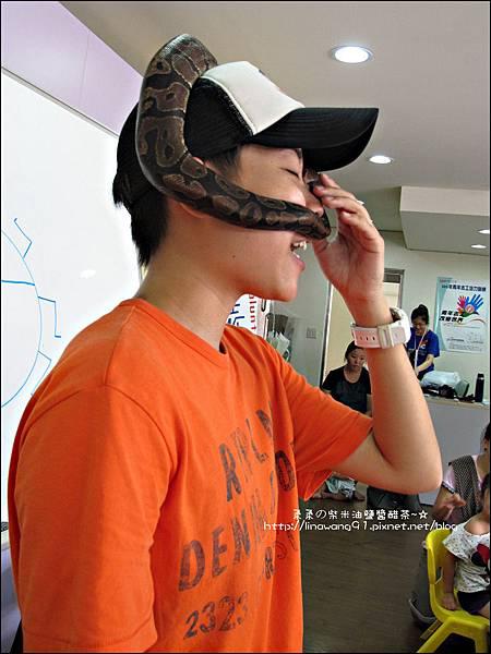 2011-0802-昆蟲課-昆蟲老師-吳沁婕 (27).jpg