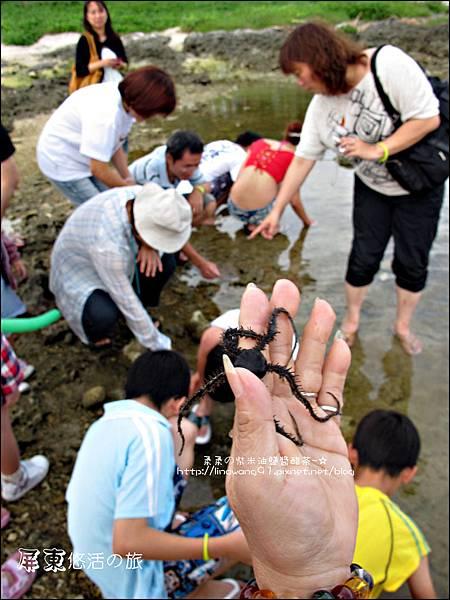 2011-0915-0916-屏東墾土-悠活兒童旅館 (31).jpg