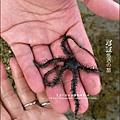 2011-0915-0916-屏東墾土-悠活兒童旅館 (32).jpg