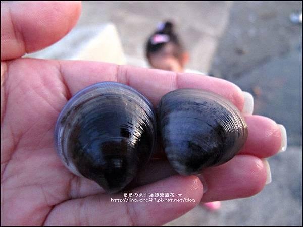 2011-0926-新竹-香山濕地挖蛤蜊 (27).jpg