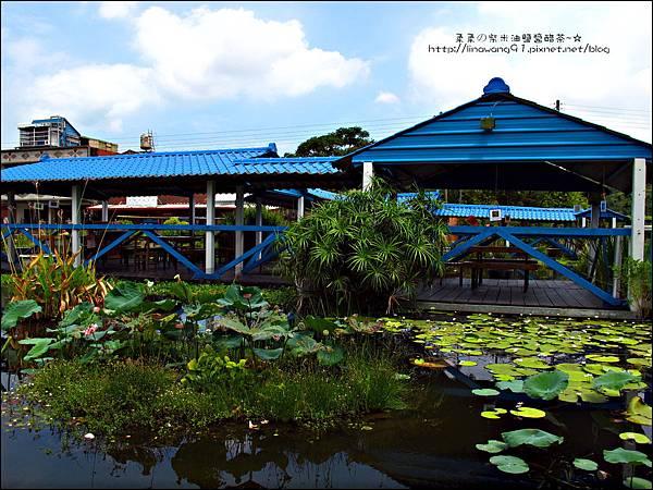 2011-0826-竹北-善水草塘-風景玩樂篇.jpg