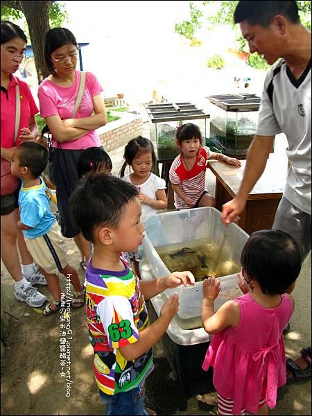 2011-0826-竹北-善水草塘-生態導覽篇 (2).jpg