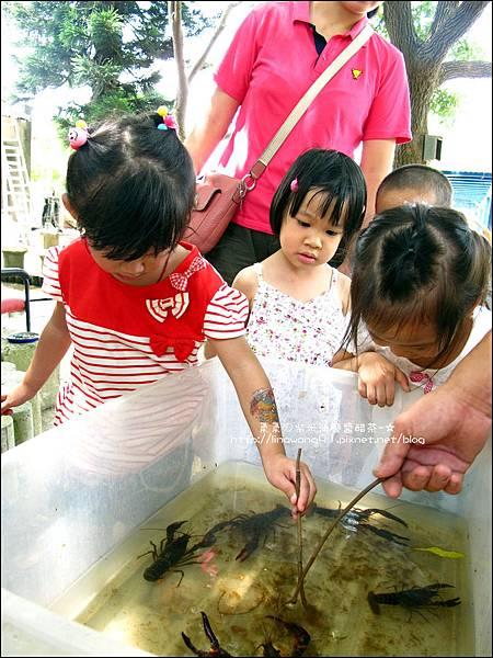 2011-0826-竹北-善水草塘-生態導覽篇 (4).jpg