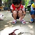 2011-0826-竹北-善水草塘-生態導覽篇 (6).jpg