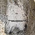 2011-0917-台南-七股鹽山 (3).jpg