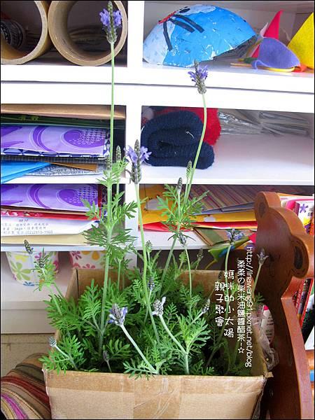 媽咪小太陽親子聚會-紫色-薫衣草-2011-0223 (12).jpg