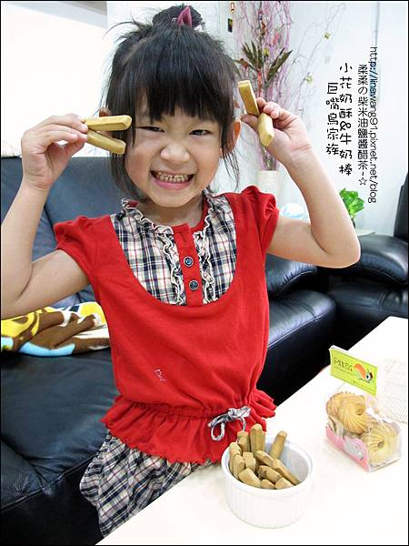 2011-1107-巨嘴鳥家族-小花奶酥-牛奶棒 (1).jpg