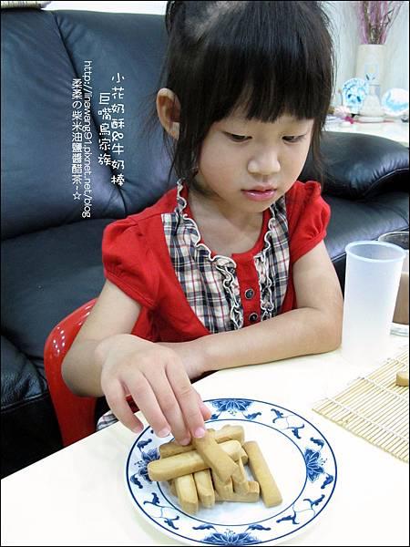 2011-1107-巨嘴鳥家族-小花奶酥-牛奶棒 (23).jpg