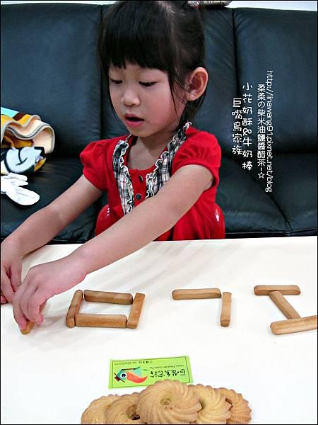 2011-1107-巨嘴鳥家族-小花奶酥-牛奶棒 (27).jpg