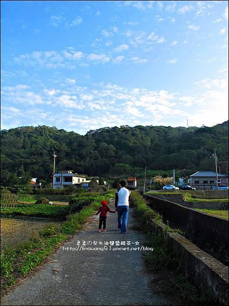 2011-1204-新埔-大蒜餃子館-波斯菊花 (28).jpg