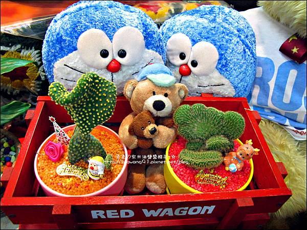 2012-0118-聖誕節-過年佈置-多肉植物 (4).jpg