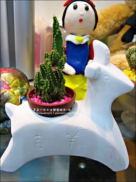 2012-0118-聖誕節-過年佈置-多肉植物 (12).jpg