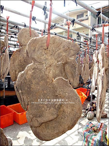 2011-0226-苗栗大湖-汶水老街 (19).jpg