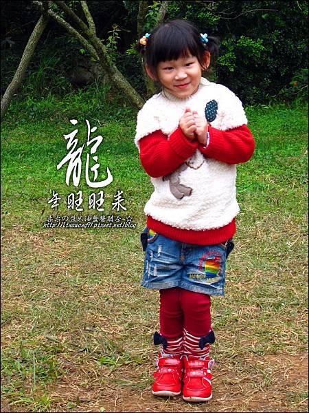 2012-0128 -清大梅園 (9).jpg