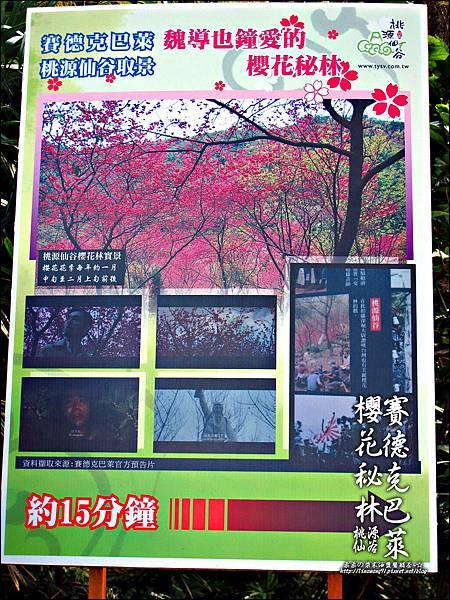 2012-0212-桃園-桃源仙谷-賽德克巴萊的櫻花秘林.jpg