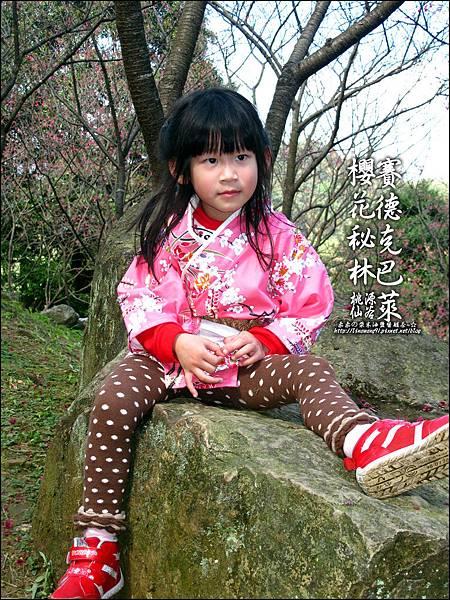 2012-0212-桃園-桃源仙谷-賽德克巴萊的櫻花秘林 (2).jpg