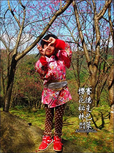 2012-0212-桃園-桃源仙谷-賽德克巴萊的櫻花秘林 (7).jpg