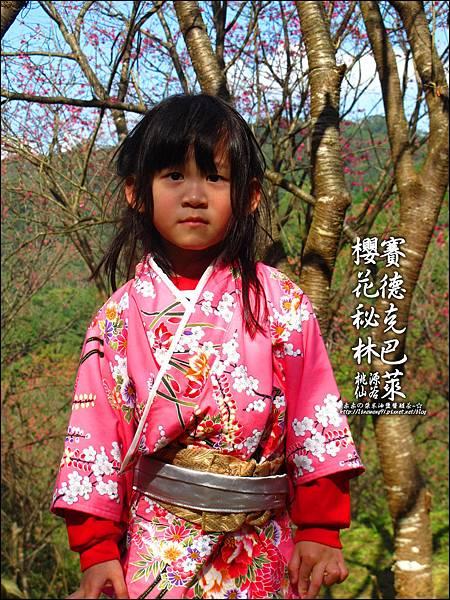 2012-0212-桃園-桃源仙谷-賽德克巴萊的櫻花秘林 (8).jpg