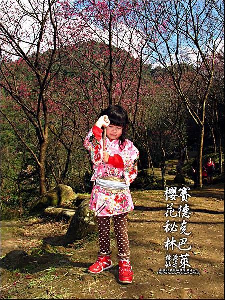 2012-0212-桃園-桃源仙谷-賽德克巴萊的櫻花秘林 (14).jpg