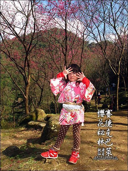 2012-0212-桃園-桃源仙谷-賽德克巴萊的櫻花秘林 (15).jpg