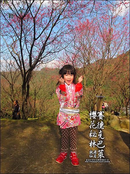 2012-0212-桃園-桃源仙谷-賽德克巴萊的櫻花秘林 (17).jpg