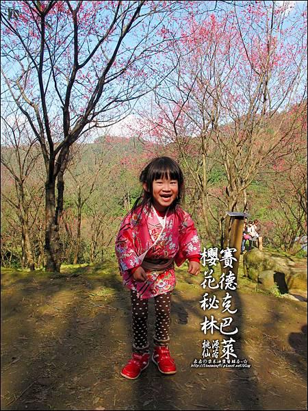 2012-0212-桃園-桃源仙谷-賽德克巴萊的櫻花秘林 (18).jpg