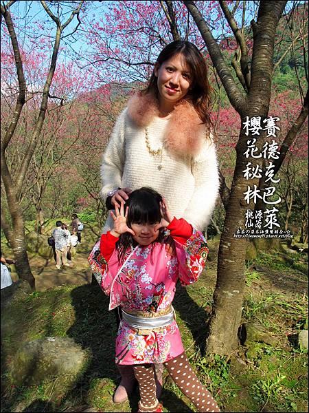 2012-0212-桃園-桃源仙谷-賽德克巴萊的櫻花秘林 (19).jpg