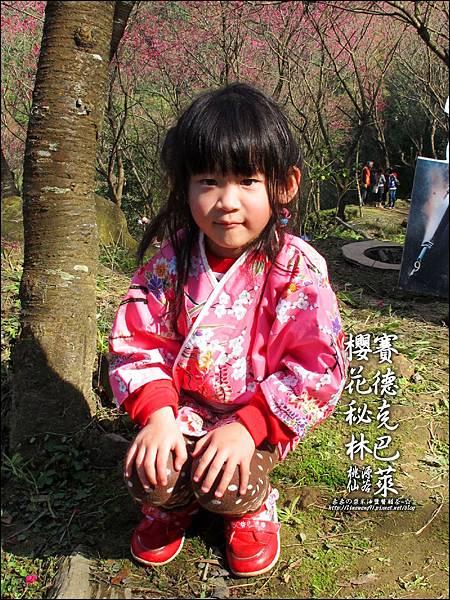 2012-0212-桃園-桃源仙谷-賽德克巴萊的櫻花秘林 (22).jpg