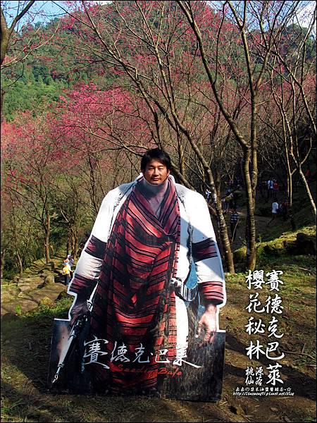 2012-0212-桃園-桃源仙谷-賽德克巴萊的櫻花秘林 (23).jpg