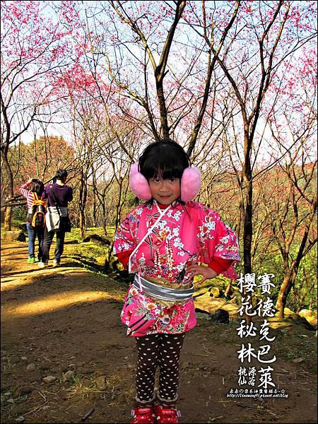 2012-0212-桃園-桃源仙谷-賽德克巴萊的櫻花秘林 (27).jpg