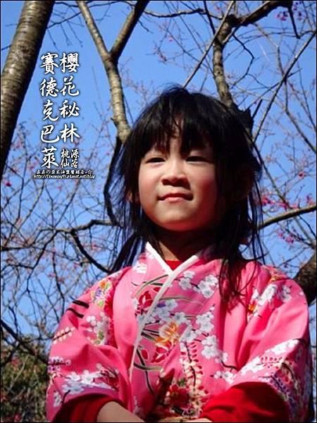 2012-0212-桃園-桃源仙谷-賽德克巴萊的櫻花秘林 (33).jpg