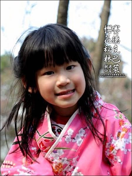 2012-0212-桃園-桃源仙谷-賽德克巴萊的櫻花秘林 (34).jpg