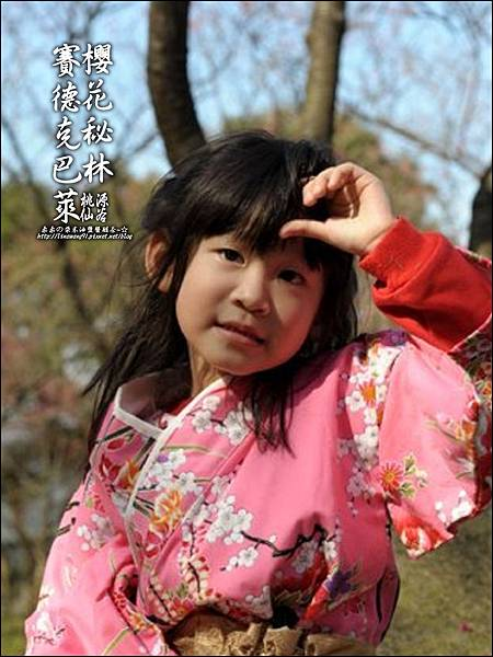2012-0212-桃園-桃源仙谷-賽德克巴萊的櫻花秘林 (35).jpg