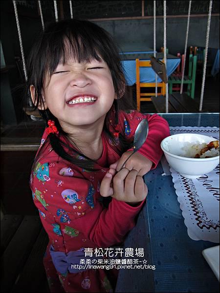 2011-1122-桃園-青松花卉農場 (8)