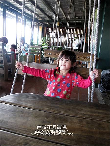2011-1122-桃園-青松花卉農場 (11)