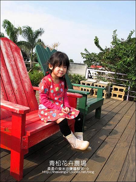 2011-1122-桃園-青松花卉農場 (12)