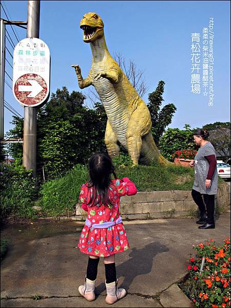2011-1122-桃園-青松花卉農場 (14)