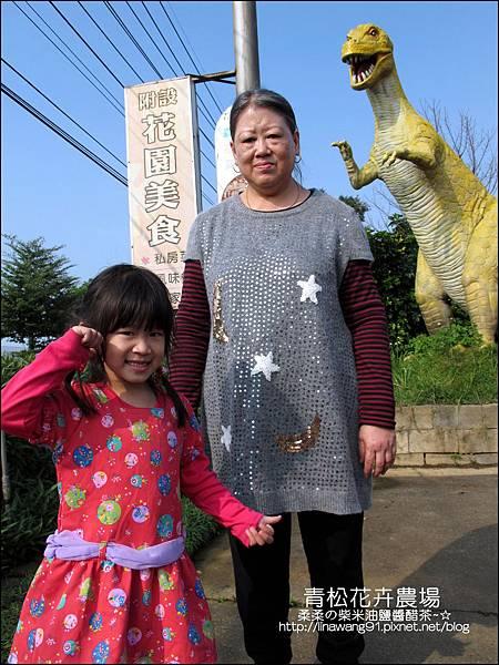 2011-1122-桃園-青松花卉農場 (15)